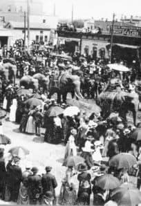 circus 1880s ph 1011